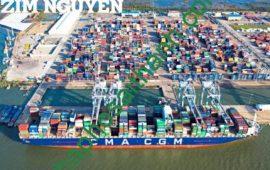 Chuyển nhượng dự án cảng 277 hecta  Quốc Tế Mỹ Xuân Tỉnh Bà Rịa – Vũng Tàu